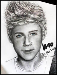One Direction - Niall by mcglory