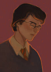 Harry Potter by RICHI-RI