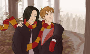 Sirius and Remus by julvett