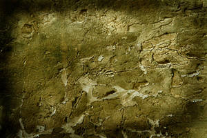 Texture 163 by deadcalm-stock
