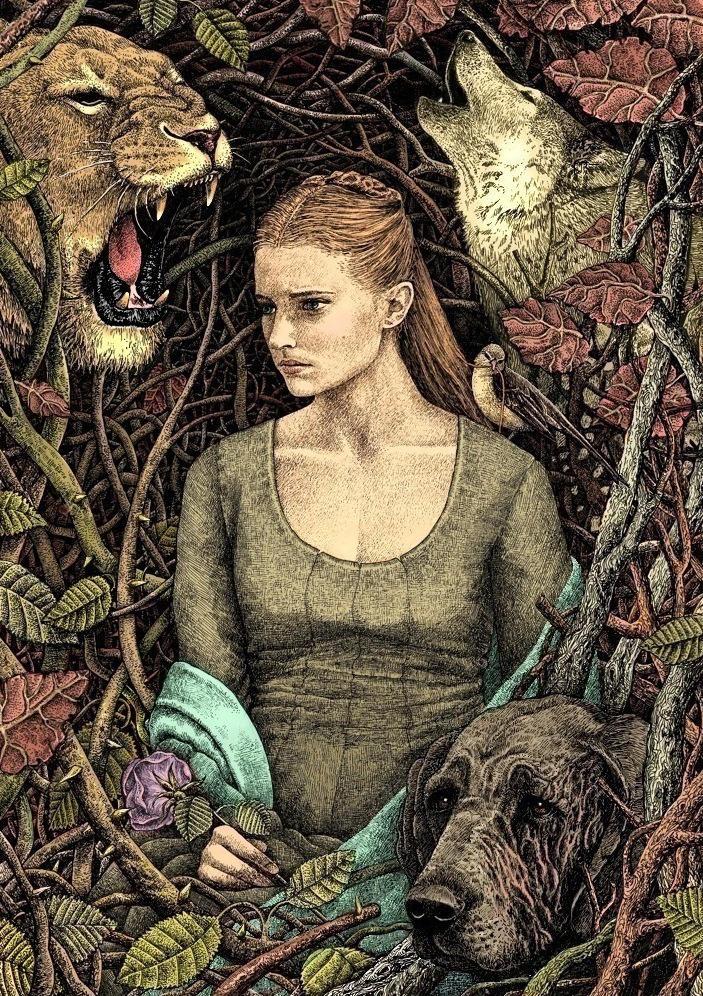 Sansa Stark by bubug
