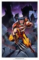 Wolverine Print.. by adelsocorona