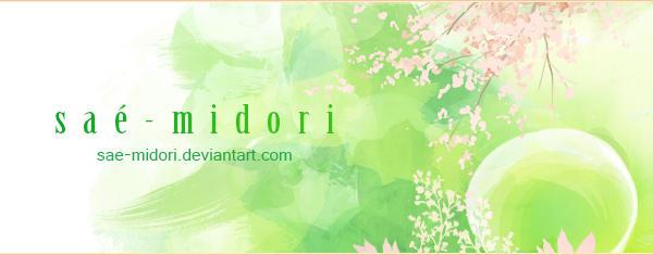 sae-midori Deviantart ID by sae-midori