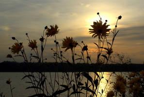 sunset over the Vistula by Su58