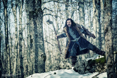 Thorin Scudodiquercia (Thorin Oakenshield) by LUCPONTI67