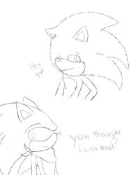 Sonic the real movi by SonicProBoom101