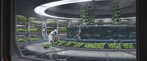 Greenhouse by LukeBerliner