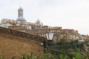 Siena by ShipperTrish