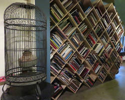 A Birdcage and a Bookshelf by ShipperTrish