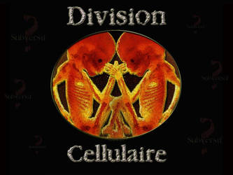 Division Cellulaire by AlexisKolesnikoff