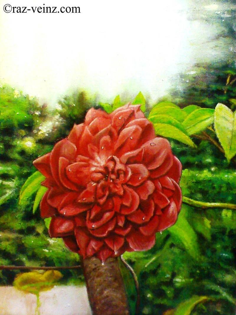 Red Rose by Raz-Veinz
