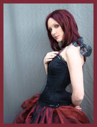 Red And Black 2 by Lisajen-stock