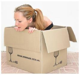 Jen in a box 4 by Lisajen-stock