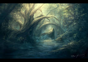 Into the forest by Krisedge