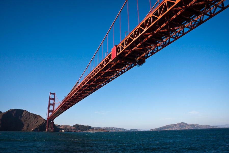 Golden Gate by cardinal