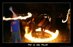 Poi in the Park IV by cardinal