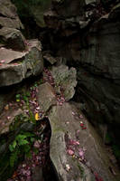 crevice by eyefeather-stock