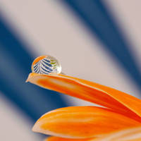 Blue and Orange Striped by TeresaHowes