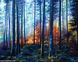 Enchanted Forest by emilyjhorner