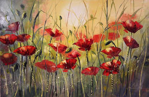Poppies in the sunlight by Kasia1989