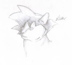 Catku by nial-09