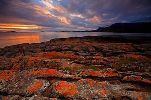 Scottish Beauty 6 by Hamrani