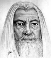 Gandalf from The Lord of the Rings by ihsans-Art