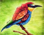 Beautiful Bird by ihsans-Art