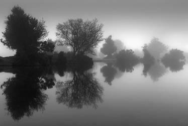 Fade To Grey by AntonioGouveia