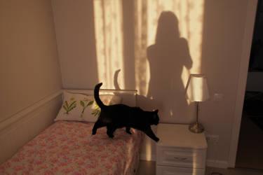 Morning sunlight by 0ksana