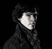 Sherlock Portrait by beth193