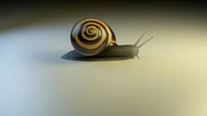 Snail by rispenlaub
