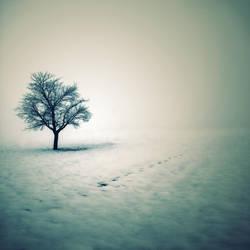 Solitude by Der-Alter-Mann