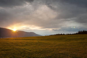 Grass Sunset by leeorr-stock