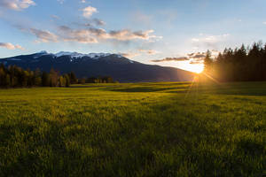 Green Sunset Field Stock 6 by leeorr-stock