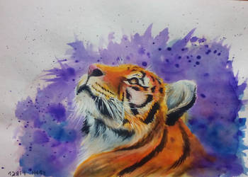 Tiger - Watercolor by tacsitimea
