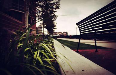 Randomness: Boardwalk Bench by thespyder