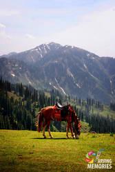 Beautiful Plateau in Pakistanq by sheze