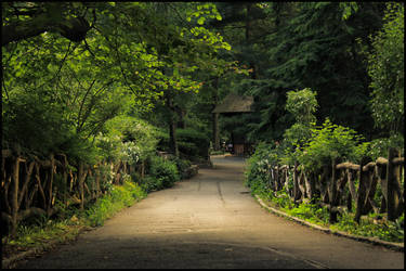 A Stroll in Central Park by ordre-symbolique