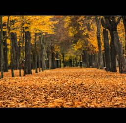 Segovia during Autumn by ordre-symbolique