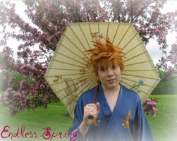 Bleach: Endless Spring by Kurohisagi