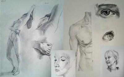 Weekly sketches by Theotenai