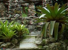 Jardim Botanico, RJ 07JUN09 71 by rbcampos