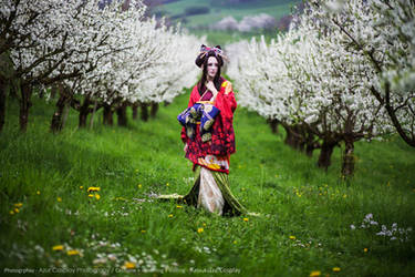 Chizuru Yukimura - Spring by RomaiLee