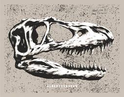 Dinosaur Skull - Albertosaurus by FabledCreative