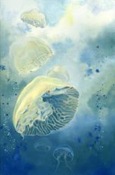 Jellyfish by couchmochi