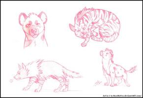Hyena Sketches~ by senpai-tuba