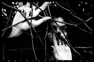 [There's not escape] by mathiasrat