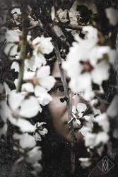[A Portrait] by mathiasrat