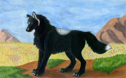 trade- Ebony wolf by KaWufAfoX